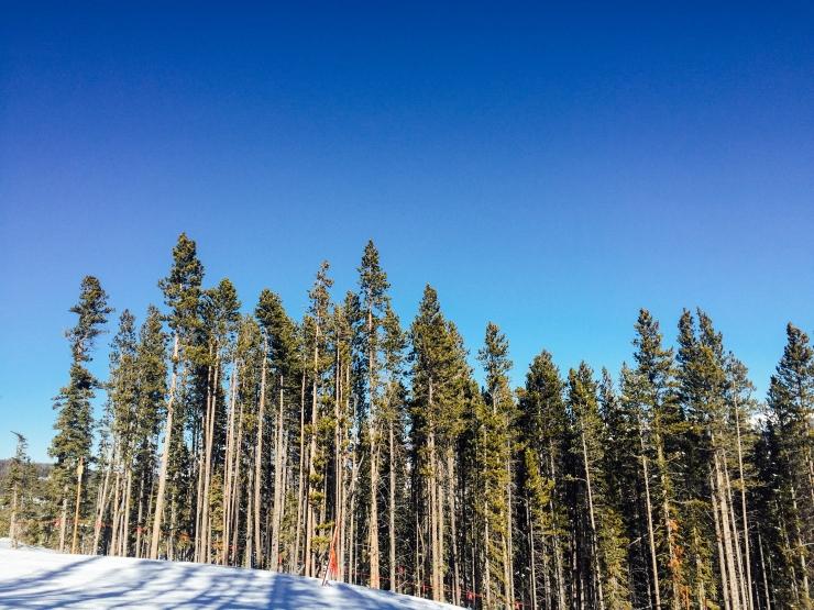 Colorado Breckenridge Adventures-49