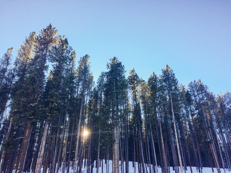 Colorado Breckenridge Adventures-58